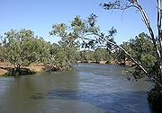 A branch of the Murray in its middle reaches, near Howlong, New South Wales