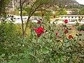 NİĞDE - panoramio (23).jpg