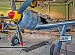 N190BR 2009 RUSSELL ROBERT R JR Focke-Wulf Fw-190-A8 Replica C N 005 (42478589760).jpg