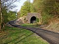 NCN46 and the Clydach Tunnels - geograph.org.uk - 409716.jpg