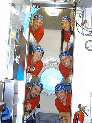 Peggy Whitson - NEEMO 5 crew members are pictured in the bunkroom aboard the Aquarius research habitat. Top, L-R: Garrett Reisman, Emma Hwang; Middle: Whitson, Clayton Anderson; Bottom: James Talacek, Ryan Snow.