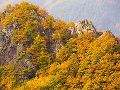 NSG Ahrschleife-09.10.08-8.JPG