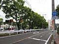 Nagasaki prefectural road 11 Sasebo-Hino-Matsuura route.jpg