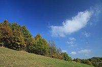 Natural monument Na Strazi in autumn 2011 (13).JPG