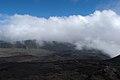 Nature La Réunion, janvier 2018 21.jpg