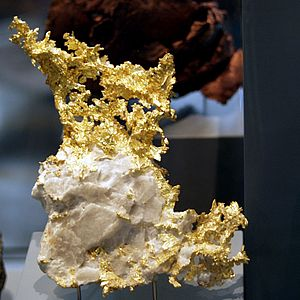 Native metal - Native gold partially embedded in quartz gangue