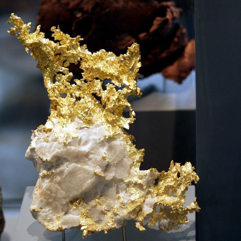 Naturkundemuseum Berlin - Gediegen Gold in Quarz, Eagles Nest Mine, Placer County, Kalifornien, USA