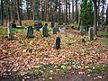 Naujamiesčio karaimų kapinės, antkapiai.JPG
