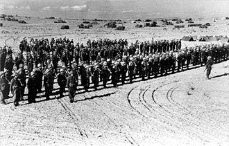 Negev Brigade - Negev Brigade soldiers
