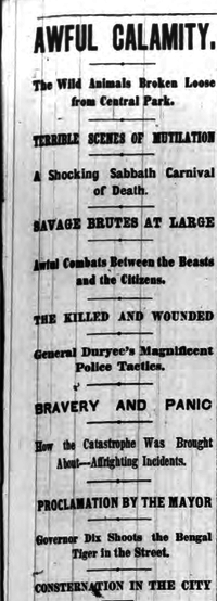 Headline for New York Herald story New York Herald 1874 Zoo Hoax Headline.png