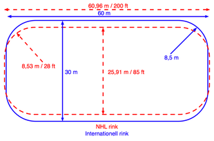 campo da hockey su ghiaccio wikipedia