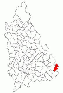 Niculești Commune in Dâmbovița, Romania