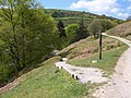 Nidderdale Way footpath to bridge over Ashfold Side Beck - geograph.org.uk - 433171.jpg