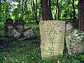 Nowy Cmentarz Zydowski - Przemysl16.jpg