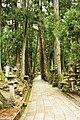 Okuno-in cemetery, Koyasan (3810163165).jpg