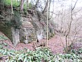 Old lime quarry - Feb 2012 - panoramio.jpg