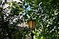 Old town, Bergen (55) (36316933732).jpg