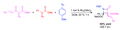 One Pot, Diastereoselective Synthesis of Beta-Lactams.png