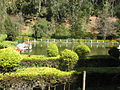 Ooty view in januvary 2013 by irvin calicut (33).JPG