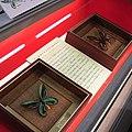 Ornithoptera alexandrae.jpg