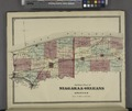 Outline Plan of Niagara and Orleans Counties NYPL1602483.tiff