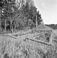 Overzicht kleine kas en broeikassen - Molenhoek - 20002549 - RCE.jpg
