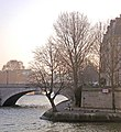 PC190030 Paris IV Ile St Louis reduct.jpg