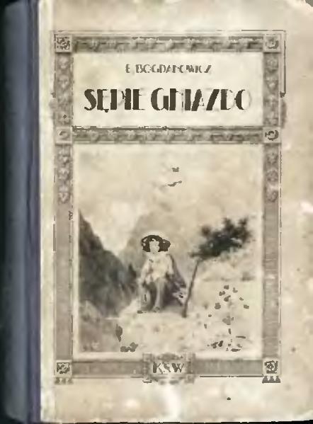 File:PL Bogdanowicz Edmund - Sępie gniazdo.djvu
