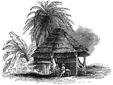 PSM V24 D637 Indian hut in the tiera caliente.jpg