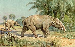 Palaeomastodon, Darstellung von Heinrich Harder (1912)