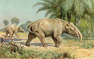 Palaeomastodon - Artistic representation by Heinrich Harder