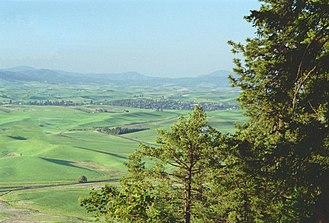 Whitman County, Washington - Image: Palouse wa