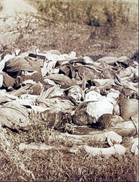 Paraguayan corpses in the battlefield