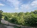 Parc Marquenterre - Saint-Quentin-en-Tourmont (FR80) - 2021-05-29 - 10.jpg