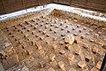 Parc archéologique Bliesbruck 2012 pradigue 16.JPG