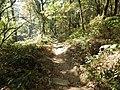 Parque nacional de Peneda-Gerês (36968471083).jpg