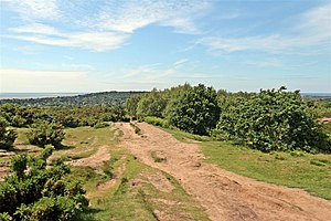 Thurstaston Common - Image: Pathway, Thurstaston Hill (geograph 2990385)