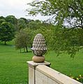 Peel Park Pineapple (3519085525).jpg