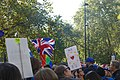 People's Vote March For The Future (30596437717).jpg