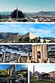 Petrel-collage.jpg