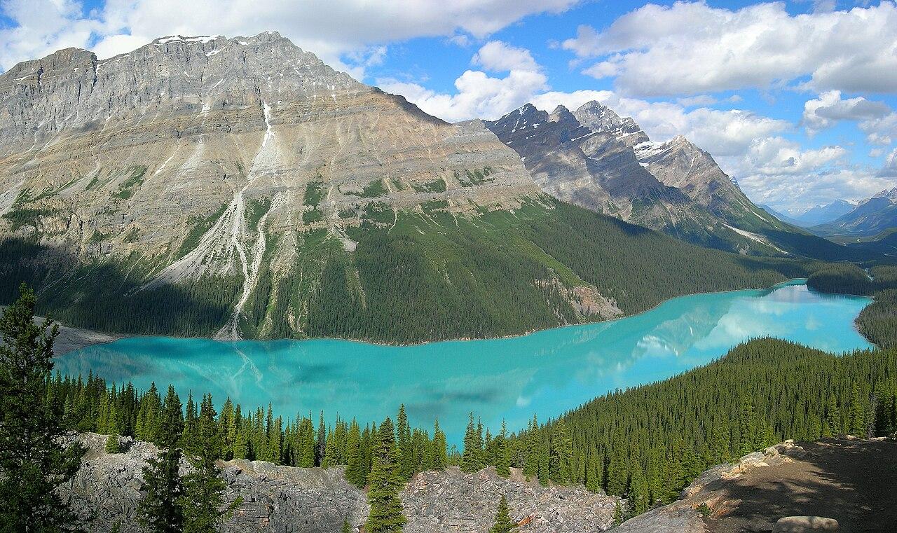 Le lac Peyto, situé dans le parc national de Banff (Alberta; Canada), avec sa couleur turquoise, vu d'un point de vue sur la Promenade des Glaciers.  (définition réelle 2000×1183)