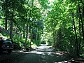 Phillips Drive Ashtabula, Ohio June 2015 - panoramio (1).jpg
