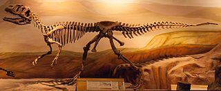<i>Piatnitzkysaurus</i> genus of reptiles (fossil)