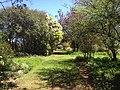 Picking Garden Saumarez Homestead.jpg