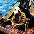 PikiWiki Israel 69690 port of jaffa.jpg