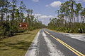 Pinelands Trail (3), NPSPhoto (9258059722).jpg