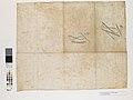 Planta da Nova Rede de Esgôtos dos Bairros de Santa Cecília e Vila Buarque com o Cadastro dos Prédios Ligados ao Collector Principal Durante o Anno de 1893 - 2, Acervo do Museu Paulista da USP.jpg