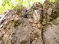 Plezališče Boč (2).jpg