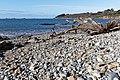 Plouezoc'h - Baie de Morlaix - 011.jpg