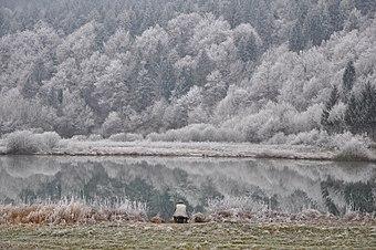 PodpeskoJezero-zima.JPG